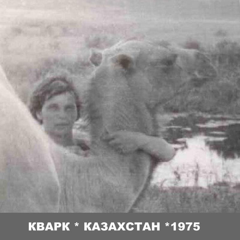 "Альбомы ССО ""Кварк"""